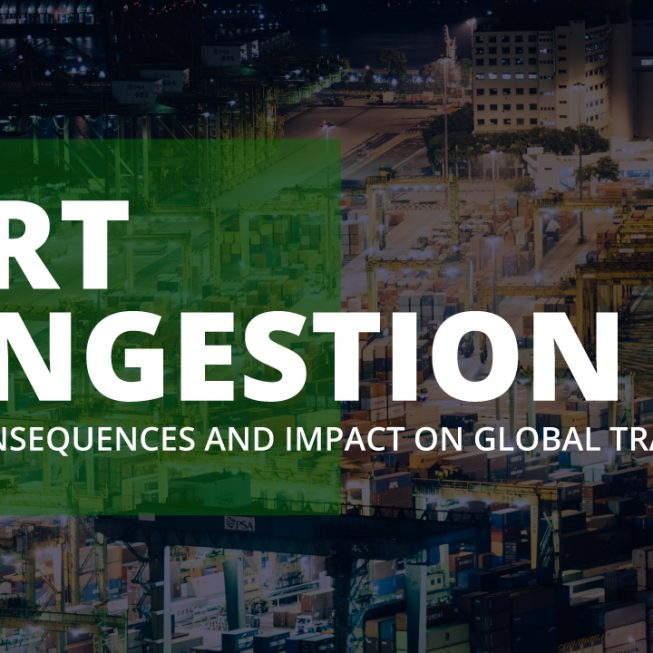 port congestions causes and effects