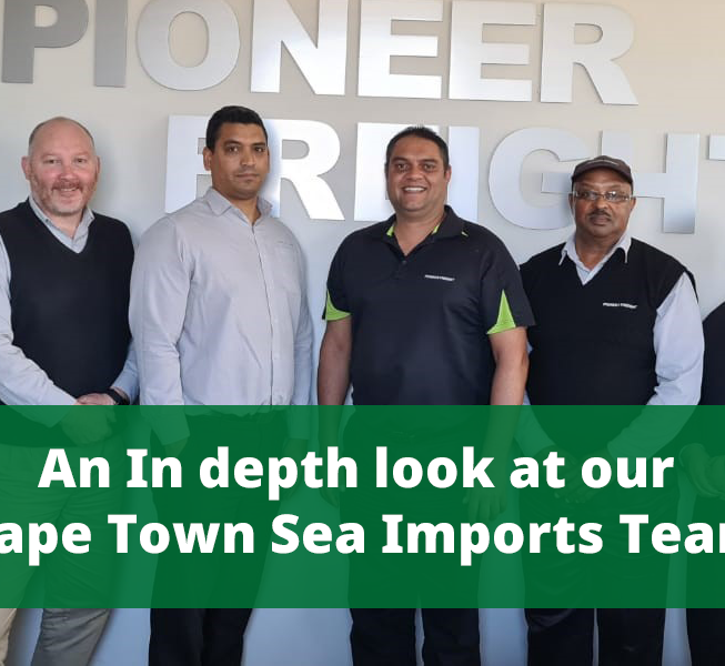 pioneer freight sea imports team